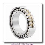FAG NJ219-E-TVP2-C3 Cylindrical Roller Bearings