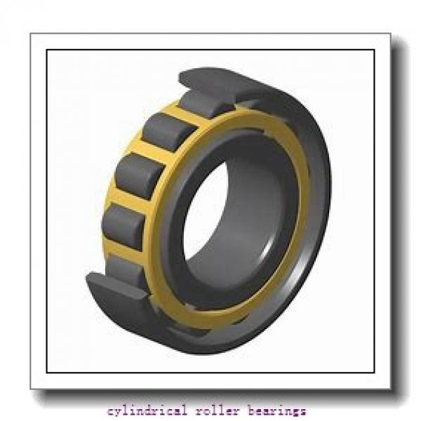 FAG NU1036-M1-C3 Cylindrical Roller Bearings #3 image